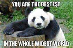 The bestest in the whole widest world confession panda make a meme