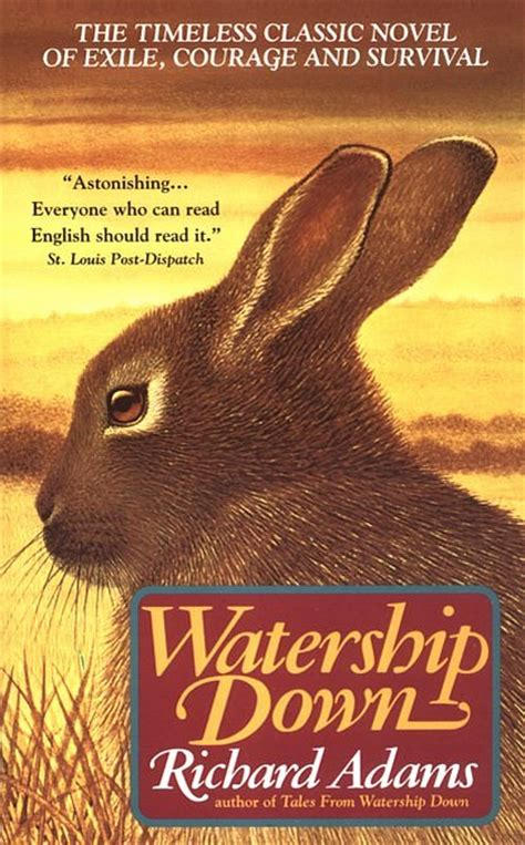 libro watership down oneworld classics my heart has joined the thousand watership down amanda rudd s blog