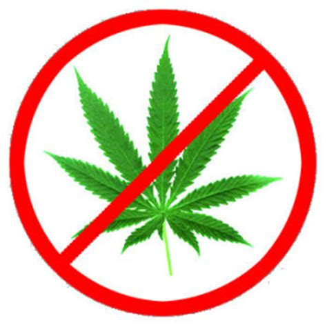 the marijuana growers guide natures pharmacy organic no till cannabis cultivation from seed to harvest books image gallery no marijuana