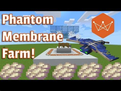 minecraft tutorial phantom membrane farm   youtube