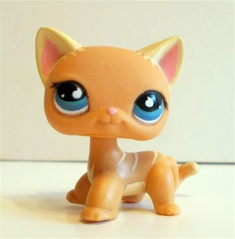 ebay lps cats and dogs ebay lps cats related keywords ebay lps cats keywords keywordsking