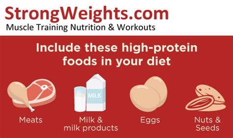 protein x supplement is protein x an supplement or a protein