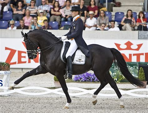 best dressage edward gal and moorlands totilas totilas history in photos from 2008 through 2015