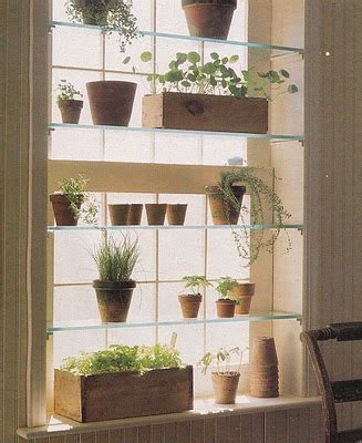 window herb garden add glass shelves to a window in your kitchen or dinning