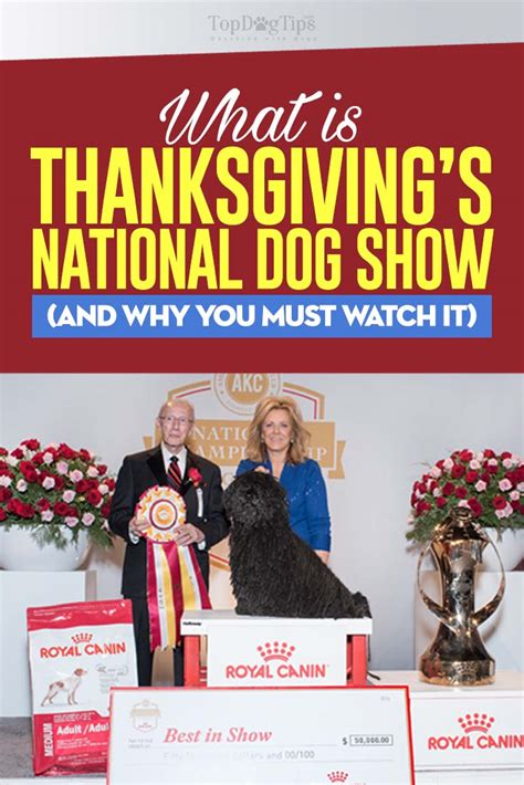 thanksgiving show thanksgiving show 2017 4 reasons why you should it