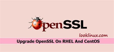 redhat in centos 6x how can i upgrade to kernel 34 how to upgrade openssl on rhel and centos operating