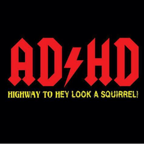 Adhd Squirrel Meme