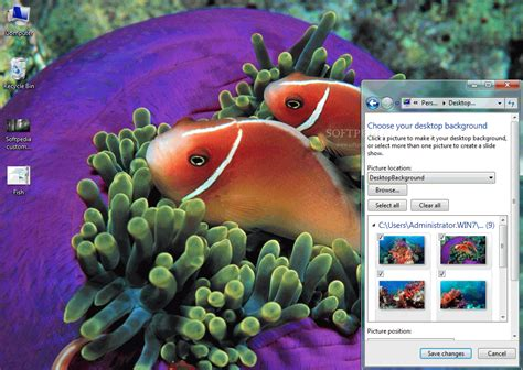 goldfish themes for windows 7 tropical fish windows 7 theme download