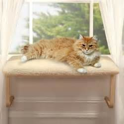 window cat seat cat window perches do you one