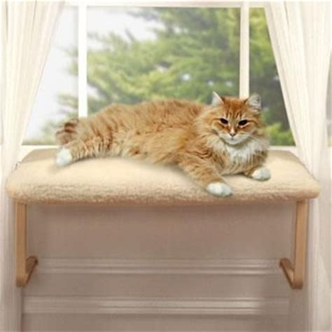 cat seat for window cat window perches do you one