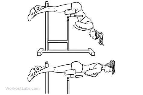 hyperextensions without bench back extensions hyperextensions workoutlabs