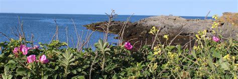 Coastal Detox Fax by Contact