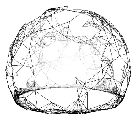 sphere pattern in nature phyllotaxis sphere evsc
