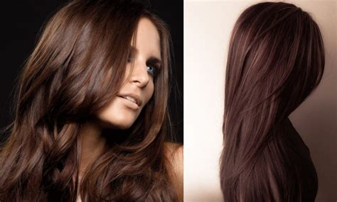 color de pelo chocolate oscuro mechas para cabello oscuro related keywords mechas para