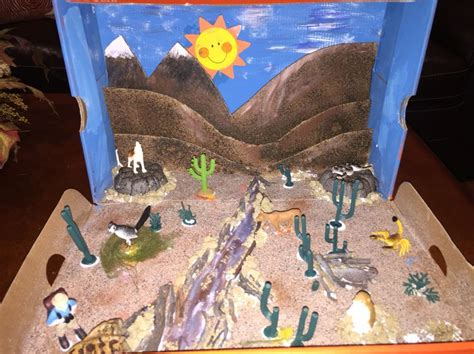 25 best ideas about dioramas on pinterest shadow box the 25 best desert ecosystem ideas on pinterest desert