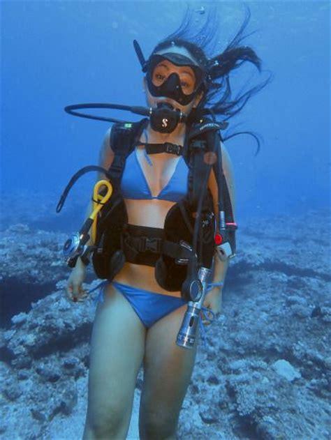 sexi dive 62 best images about brave scuba undersea on