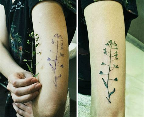 botanical tattoos made by imprinting real leaves on the skin