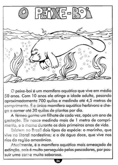 Blog da Escola Boa Vista: 3º ANO