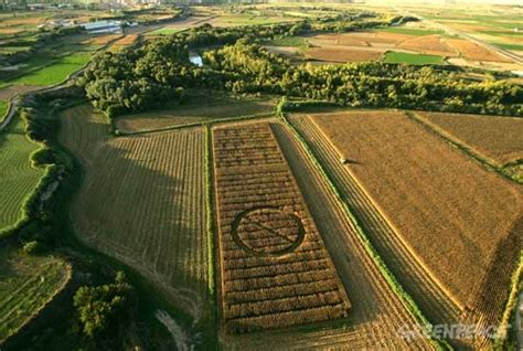 imagenes satelitales para agricultura transg 233 nicos greenpeace espa 241 a