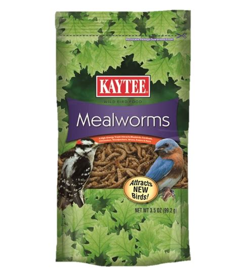 mealworms suet feeders seed cakes and mealworms kaytee