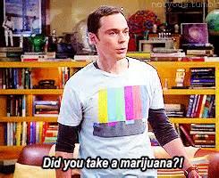 How Did It Take You To Detox Marijuana by Big Theory Did You Take A Marijuana Gif Find
