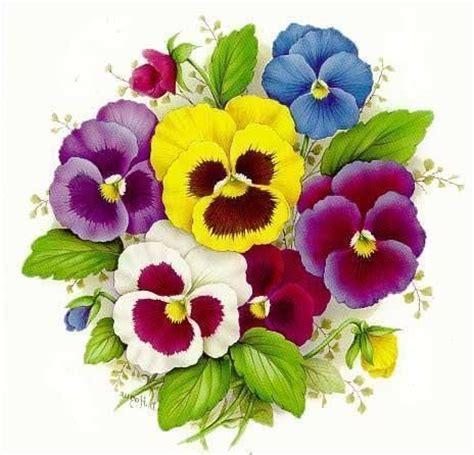 imagenes de flores llamadas pensamientos pansies and smile on pinterest