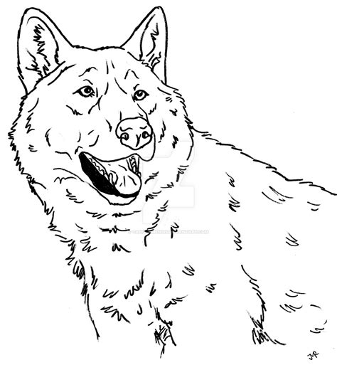 wolf puppies coloring pages wolf dog coloring page iii by canis simensis on deviantart