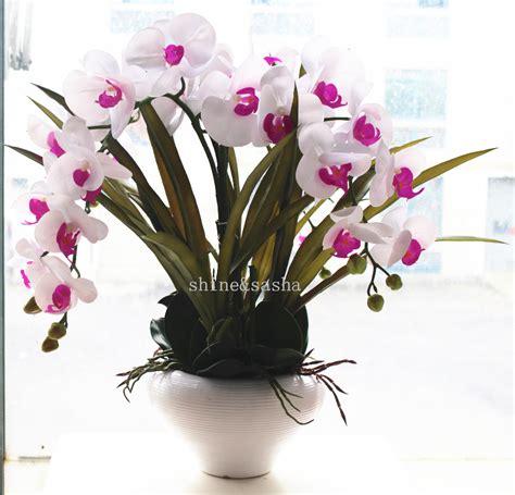 fiori real touch orchidea vaso acquista a poco prezzo orchidea