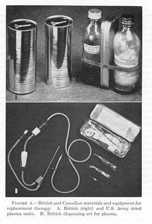 Florry Korean Bag Two In One plasma darah bahasa indonesia ensiklopedia bebas
