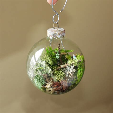 nature ornament terrarium ornament natural christmas