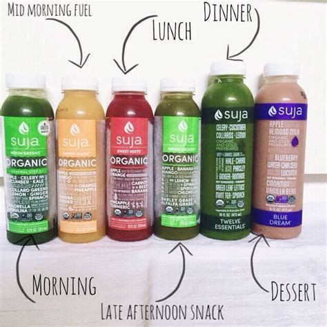 Juice Detox Diet Sydney by I Did A Juice Cleanse With Suja Juice Here Is How It Went