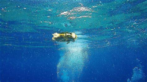 lettere in fondo al mare una targa in fondo al mare per tutte le vittime invisibili