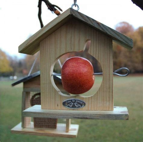 Build Cardinal Bird House Design Diy Pdf Carport Cardinal Bird House Plans