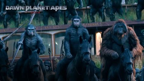 awn of the planet of the apes dawn of the planet of the apes review coop on the scoop