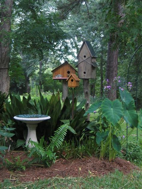 bird gardening backyard bird lover - Gardening For Birds