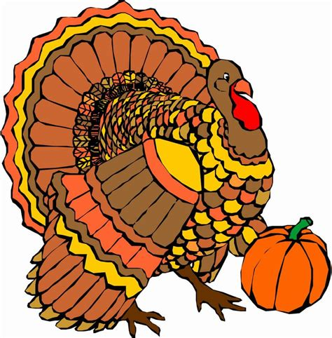 thanksgiving clipart thanksgiving turkey pictures turkey clipart images