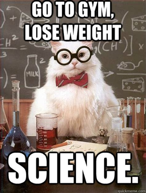 Losing Weight Meme - go to gym lose weight science science cat quickmeme