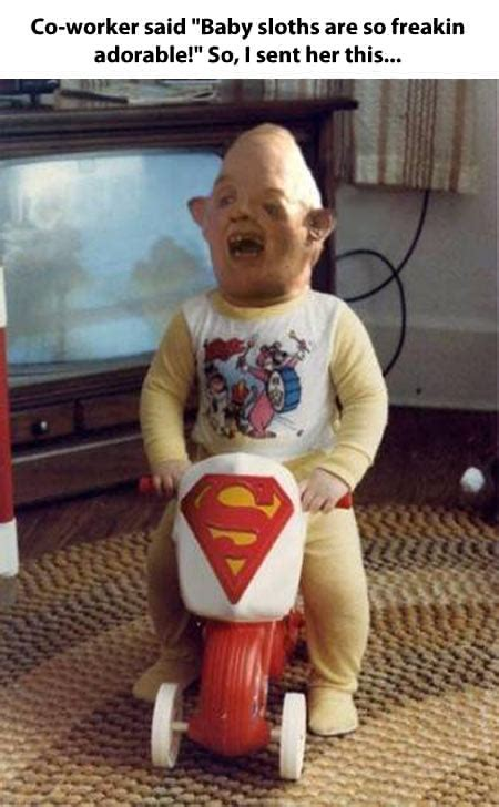 Baby Sloth Meme - baby sloths the goonies know your meme