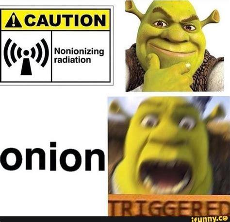 Shrek Memes - shrek urself b4 u wreck urself tru pinterest nice onions and lol