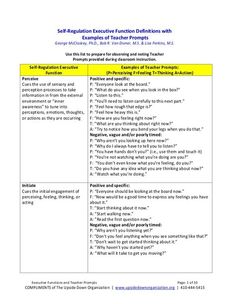 Self-Regulation Executive Function Definitions with ... Examples Of Self Regulation In The Classroom