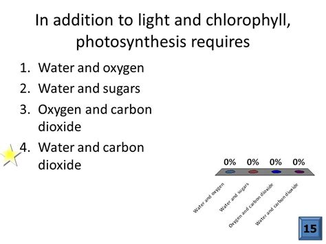 In Addition To Light And Chlorophyll Photosynthesis Requires which of the following are autotrophs ppt