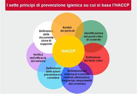 haccp alimenti igiene degli alimenti il piano di autocontrollo