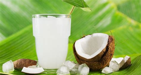 Can You Put Coconut Water In With Your Detox Drinks by 10 Health Benefits Of Coconut Water Belfastvibe