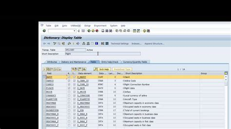 sap abap tutorial videos sap abap tutorial navigation database concepts day 2