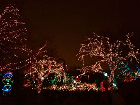 zoo lights at lincoln park zoo winter things to do in chicago zoo lights at lincoln park