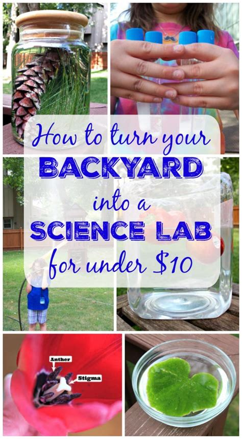 backyard science experiments for kids 20 diy science experiments for kids backyard science