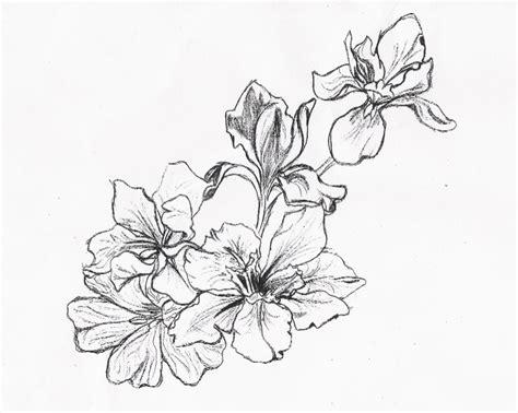 design flower drawing 16 flower designs drawings images sakura flower drawing