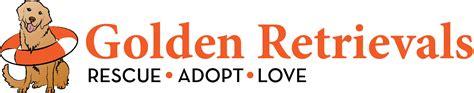 golden retrieval golden retrievals rescue adopt