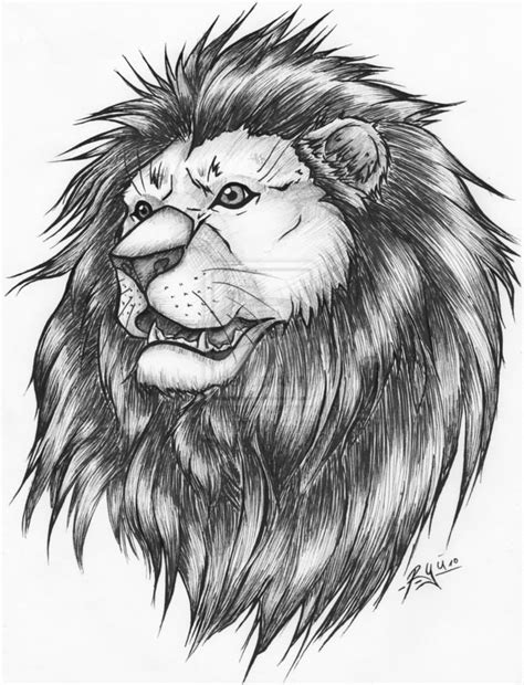 lion tattoo sketch 82 design sketches