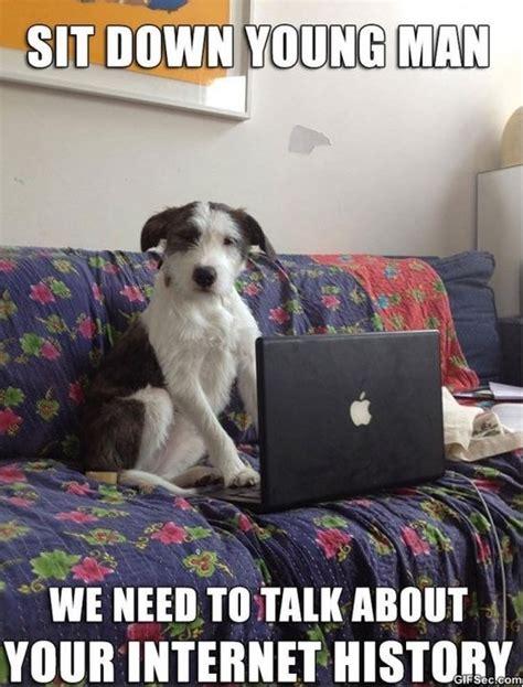 Serious Dog Meme - serious dog meme